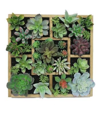 Hello Spring Succulent Arrangement in Box