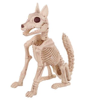 The Boneyard Fox Bones