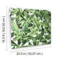 York Wallcoverings Wallpaper-Palm Leaf