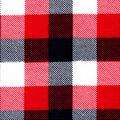Snuggle Flannel Fabric-Red & Blue Buffalo Checks