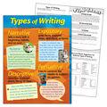 Types of Writing Learning Chart 17\u0022x22\u0022 6pk