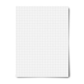 "Royal Brites Premium White Grid Heavy Weight Poster Board-22""x28"""