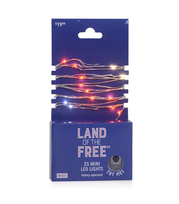 Land of the Free 25 ct Red, White & Blue Dot Mini LED Rice Lights