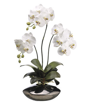 Bloom Room Luxe 31'' Phalaenopsis Orchid Plant In Ceramic Pot-White