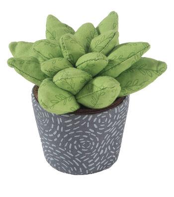 Pin Cushion-Succulent Medium Leaf