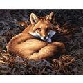 Dimensions Paint By Number Kit Sunlit Fox
