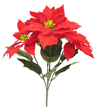 Blooming Holiday Christmas 21'' Poinsettia Bush-Red