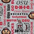 Ohio State Buckeyes Fleece Fabric-Verbiage on Heather