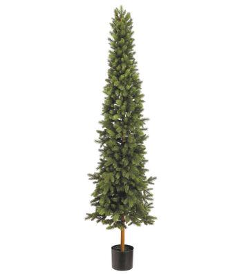 Slim Norway Pine Tree in Pot 6'
