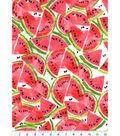 Snuggle Flannel Print Fabric 42\u0022-Watermelon Slices
