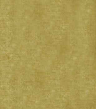 "Jaclyn Smith Upholstery Fabric 54""-Theater Velvet/Cactus"
