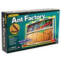 Educational Insights GeoSafari Ant Factory