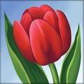 RTO Diamond Mosaic Embroidery Kit 15X15cm-Red Tulip