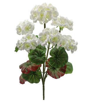 Fresh Picked Spring 18 5 Geranium Bush White