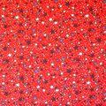 Patriotic Cotton Fabric -Stars on Red