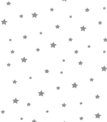Nursery Flannel Fabric -Adventure Gray Stars