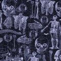 Halloween Cotton Fabric-Skeleton Anatomy Glow
