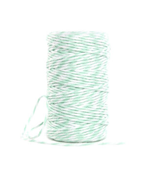 Park Lane Twine-Mint & White