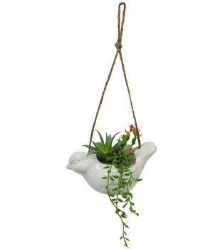 Fresh Picked Spring White Hanging Bird with Succulent Arrangement