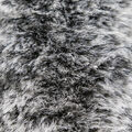Faux Fur Fleece Fabric-Channel Black Tipped