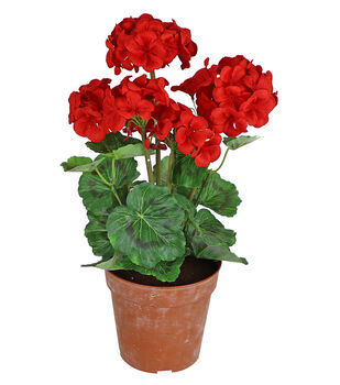 Fresh Picked Spring 18'' Potted Geraniums-Red