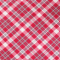 Blizzard Fleece Fabric-Red & Gray Bias Plaid