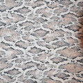 Silky Print Textured Fabric-Ivory & Brown Snake Skin