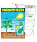 Photosynthesis Learning Chart 17\u0022x22\u0022 6pk
