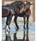 Plaid Creates Classic 16\u0027\u0027x20\u0027\u0027 Paint by Number Kit-Reflections