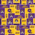 East Carolina University Pirates Fleece Fabric -Block