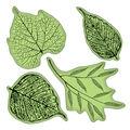 Inkadinkado Stamping Gear-Fossil Leaves