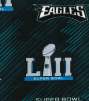 Philadelphia Eagles Fleece Fabric-Super Bowl LII Championship, , hi-res
