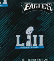 Philadelphia Eagles Fleece Fabric-Super Bowl LII Championship, , hi-res