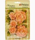 Botanica Garden Roses 1.5\u0022 To 2.5\u0022-Peach