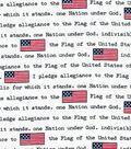 Patriotic Fabric-Pledge Of Allegiance