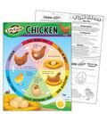 Life Cycle of a Chicken Learning Chart 17\u0022x22\u0022 6pk