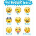 Creative Teaching Press How Are You Feeling Today? Emoji Chart 6pk
