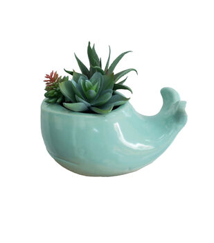 Fresh Picked Spring Blue Whale with Succulent Arrangement
