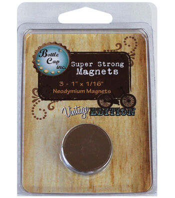 "Vintage Collection Magnets 1""X1/16"" 3/Pk-"