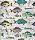 Novelty Cotton Fabric-Catch Of The Day