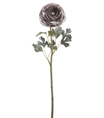 "Bloom Room 29"" Hybrid Ranunculus Stem-Gray"