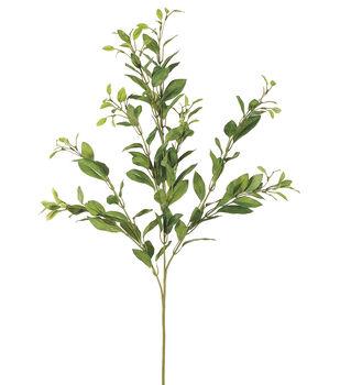 "Bloom Room 24"" Mini Ficus Spray-Green"