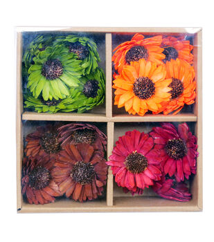 Blooming Autumn Mixed Dried Daisies in Box