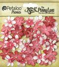 Petaloo Penny Lane Mini 40pcs 0.75\u0027\u0027 Pearl Daisies