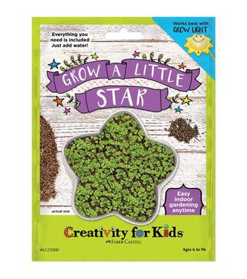 Creativity For Kids Grow a Little Star Kit