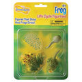 Insect Lore Frog Life Cycle Stages Figurines