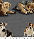 Anti Pill Fleece Fabric 58\u0027\u0027-Puppy Pals