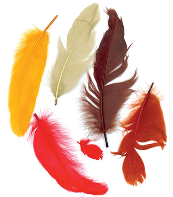 Zucker-Satinettes Feathers .25 Ounces-Fall Mix