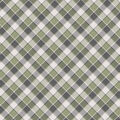 Super Snuggle Flannel Fabric-Mint Gray Plaid