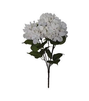Blooming Autumn Hydrangea Bush-Dark Cream